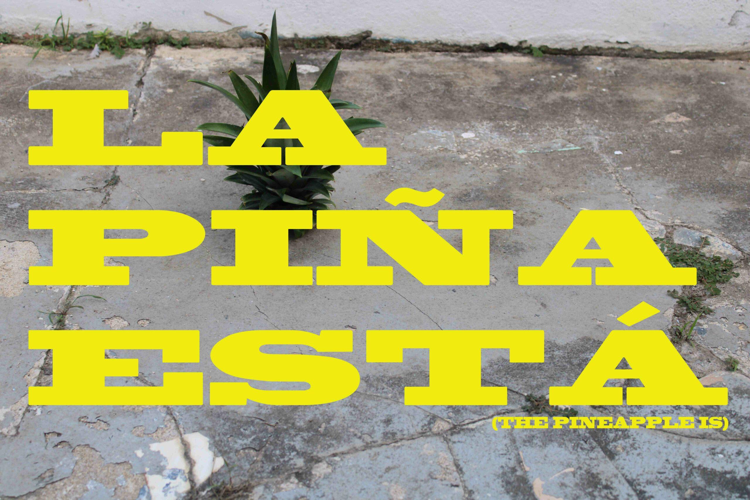 LA_PINA_ESTA_1_web